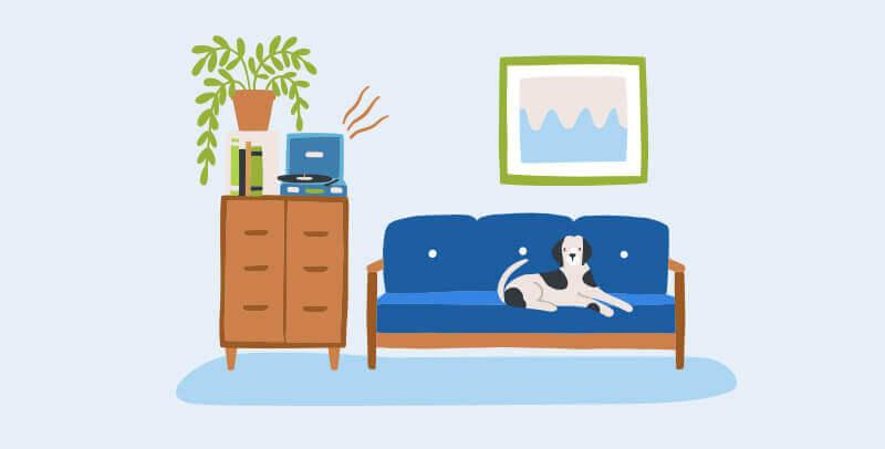 כלב על הספה