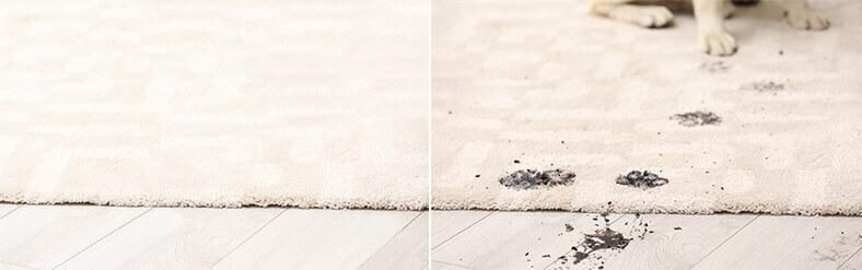 ניקוי שטיח עור פרה דוגמה לפני ואחרי 2